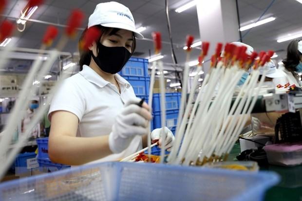 Efectuan foro sobre impactos de la pandemia de COVID-19 al desarrollo socioeconomico hinh anh 1