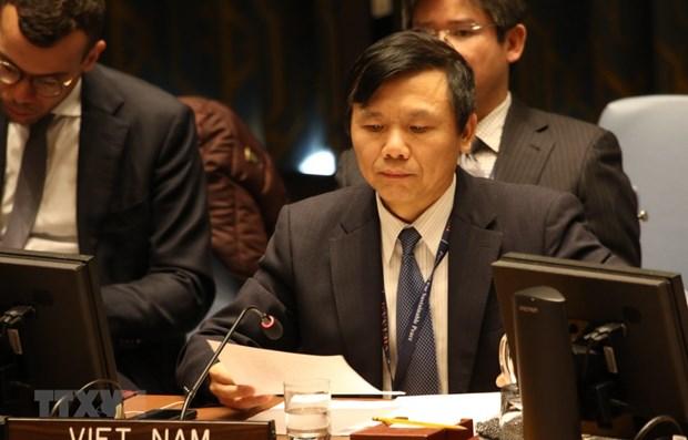 Vietnam e Indonesia destacan papel de cooperacion regional en fomento de paz en Africa Central hinh anh 1
