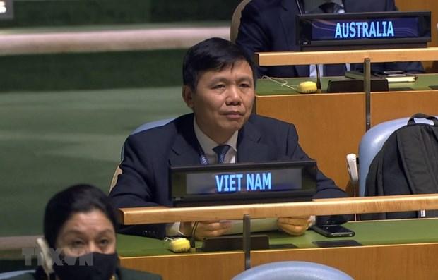 Insiste Vietnam en solucionar disputas en el Mar del Este por medios pacificos hinh anh 1