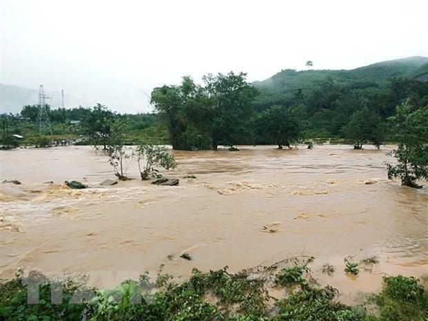 Cruz Roja de Vietnam ayuda a pobladores luego de desastres naturales hinh anh 1