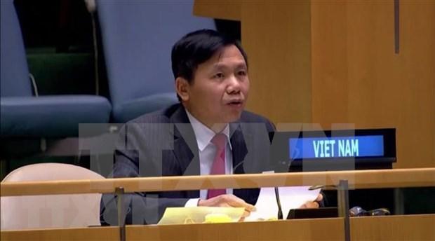 Preside Vietnam reunion del Grupo de Trabajo sobre tribunales internacionales hinh anh 1