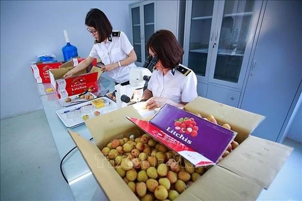 Relaciones economicas Vietnam-Australia, en momentos importantes hinh anh 1