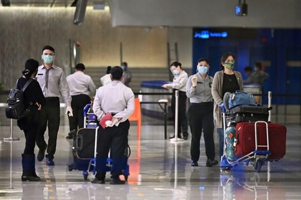 Singapur lanzara corredor de viajes especial en enero proximo hinh anh 1
