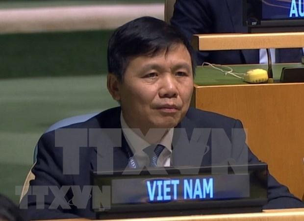 Reitera Vietnam apoyo a operaciones de Mision de ONU en Sudan del Sur hinh anh 1