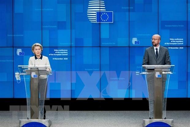 Lideres de UE desean fortalecer cooperacion con Vietnam hinh anh 1