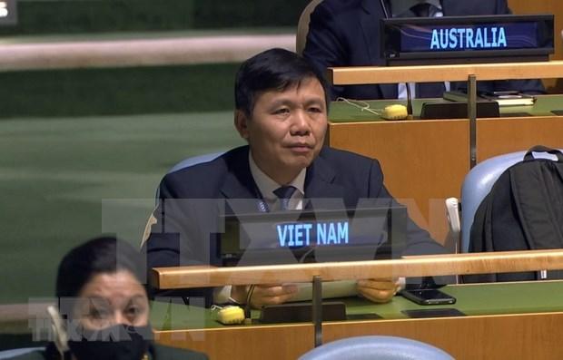 Vietnam llama a fortalecer el dialogo para solucion politica a crisis en Siria hinh anh 1