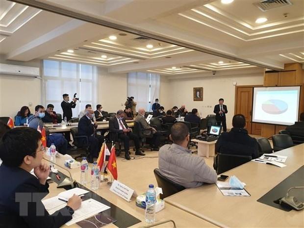 Fomentan cooperacion economica entre Vietnam y Egipto hinh anh 1