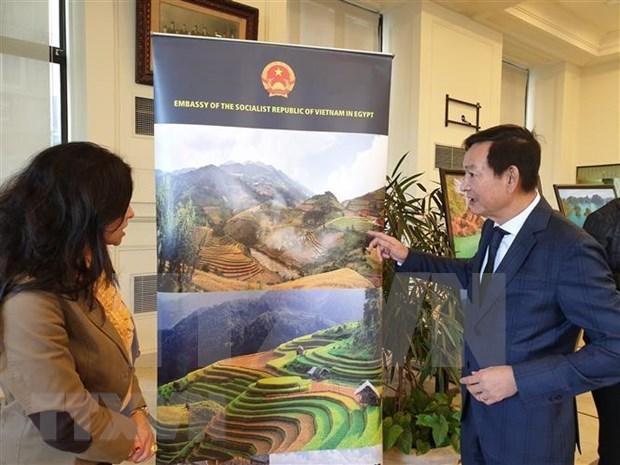 Presenta Vietnam lo mejor de su cultura en Egipto hinh anh 1