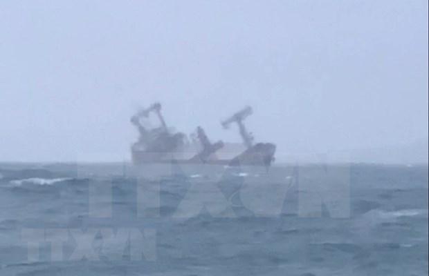 Rescatan a 11 marineros de barco panameno accidentado en aguas vietnamitas hinh anh 1