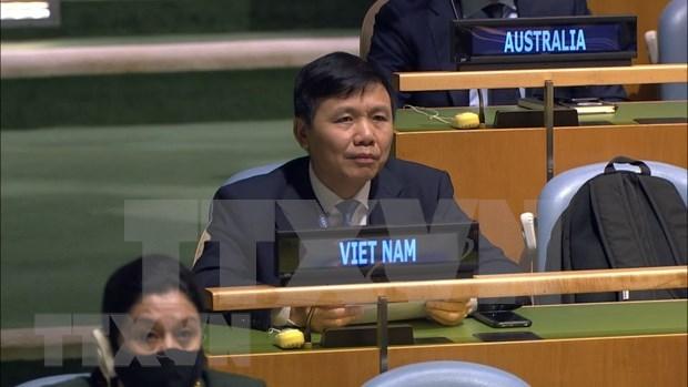Corrobora Vietnam apoyo a fomento de lazos entre organos de ONU hinh anh 1