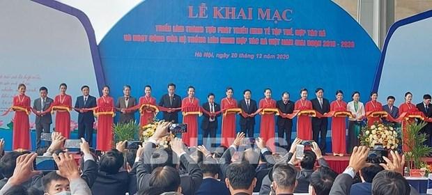 Presentan avances en desarrollo de economia colectiva en Vietnam hinh anh 1