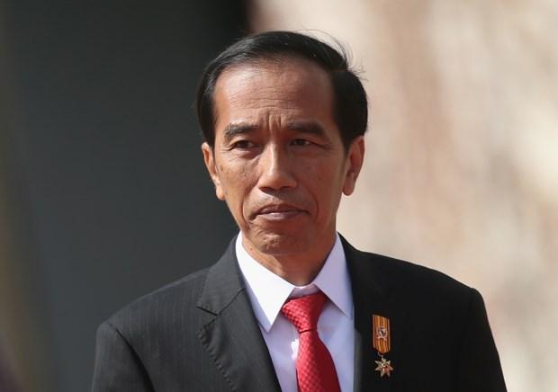 Indonesia aspira a liderar produccion regional de baterias y automoviles electricos hinh anh 1