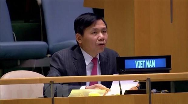 Vietnam cumple con sus responsabilidades en Consejo de Seguridad de ONU hinh anh 1