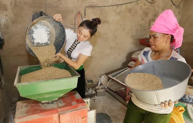 ONU respalda a progreso de areas de residencia de minorias vietnamitas hinh anh 1