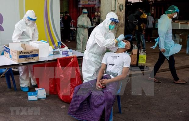 Tailandia realiza pruebas del COVID-19 a mas de 10 mil personas ante rebrote hinh anh 1