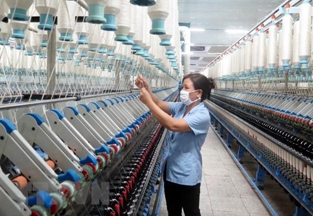 Apoyan a pymes de mujeres vietnamitas ante impactos del COVID-19 hinh anh 1