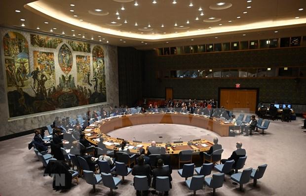 Reafirma Vietnam apoyo a desarme nuclear hinh anh 1