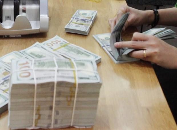 Es irrazonable la acusacion a Vietnam de manipulacion de divisas, segun economistas hinh anh 1