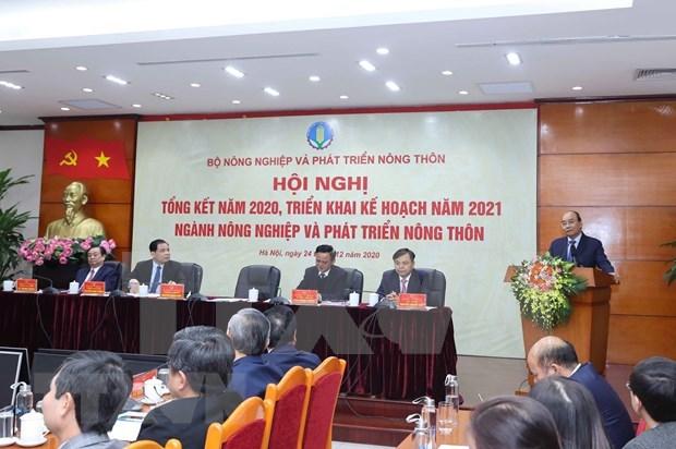 Sector agricola de Vietnam aspira a 44 mil millones de USD por exportaciones en 2021 hinh anh 1