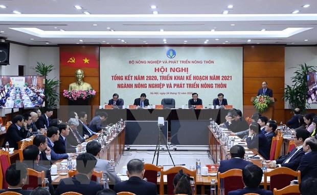 Sector agricola de Vietnam aspira a 44 mil millones de USD por exportaciones en 2021 hinh anh 2