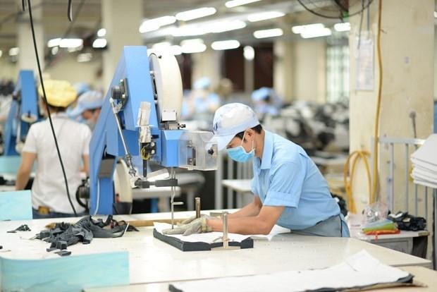 Producto Interno Bruto de Vietnam crecera 2,91 por ciento este ano hinh anh 2