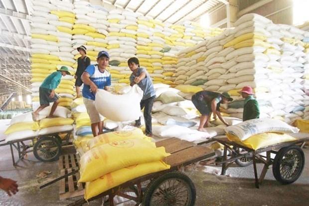 Cultivadores de arroz en Vietnam se benefician del programa de reduccion de emisiones hinh anh 1