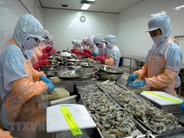 Vietnam logra resultado alentador en exportaciones de camaron pese a COVID-19 hinh anh 1