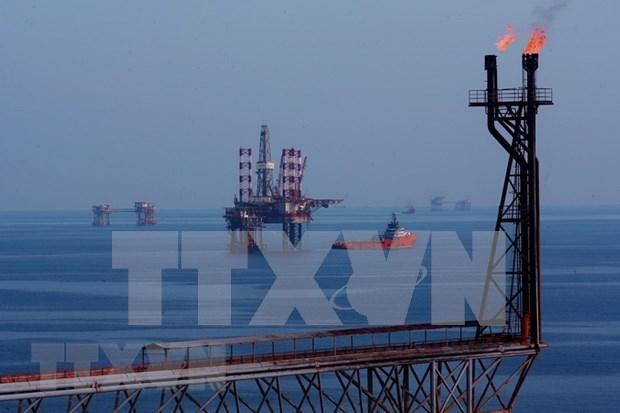 Empresa mixta Vietnam-Rusia Vietsovpetro por recuperar explotacion petrolera hinh anh 1