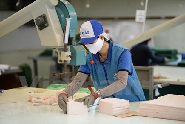 Sector textil de Vietnam espera un ingreso de 38 mil millones de dolares por exportaciones hinh anh 1