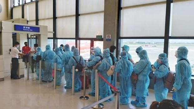Regresan a tierra natal casi 280 ciudadanos vietnamitas desde Europa hinh anh 1