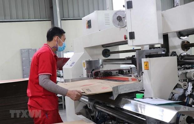 Provincia de Bac Ninh, lider nacional en produccion industrial hinh anh 1
