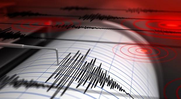 Terremoto de magnitud cinco sacude Indonesia hinh anh 1