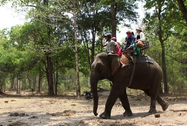 Busca provincia vietnamita integrar conservacion de patrimonios en desarrollo turistico hinh anh 1
