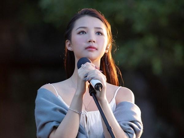 VNA publica las nominaciones del premio musical mas prestigioso de Vietnam hinh anh 1