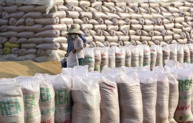 Vietnam importa 70 mil toneladas de arroz roto de la India hinh anh 1