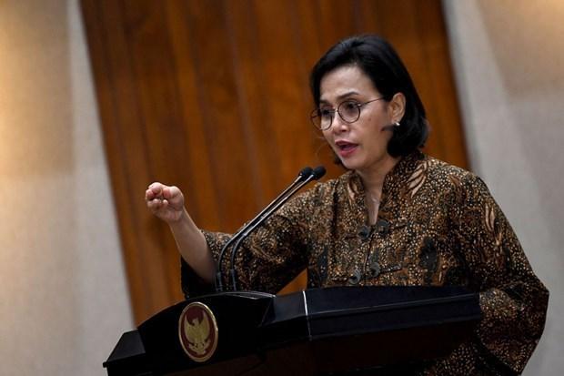 Indonesia advierte sobre gasto publico insuficiente para rescatar economia hinh anh 1