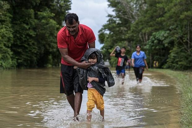 Malasia evacua a decenas de miles de personas por inundaciones hinh anh 1