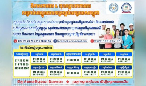 Alistan 20 mil puestos laborales para trabajadores camboyanos regresados de Tailandia hinh anh 1