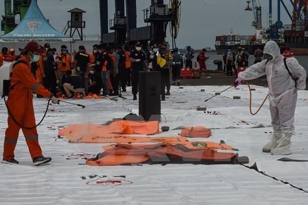 Grupo financiero indonesio compensara a victimas de accidente aereo hinh anh 1