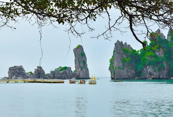 Provincia surena de Kien Giang reabre sus destinos turisticos hinh anh 1