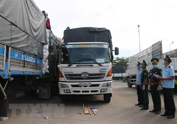 Provincia vietnamita registra exportaciones multimillonarias por puertas fronterizas hinh anh 1
