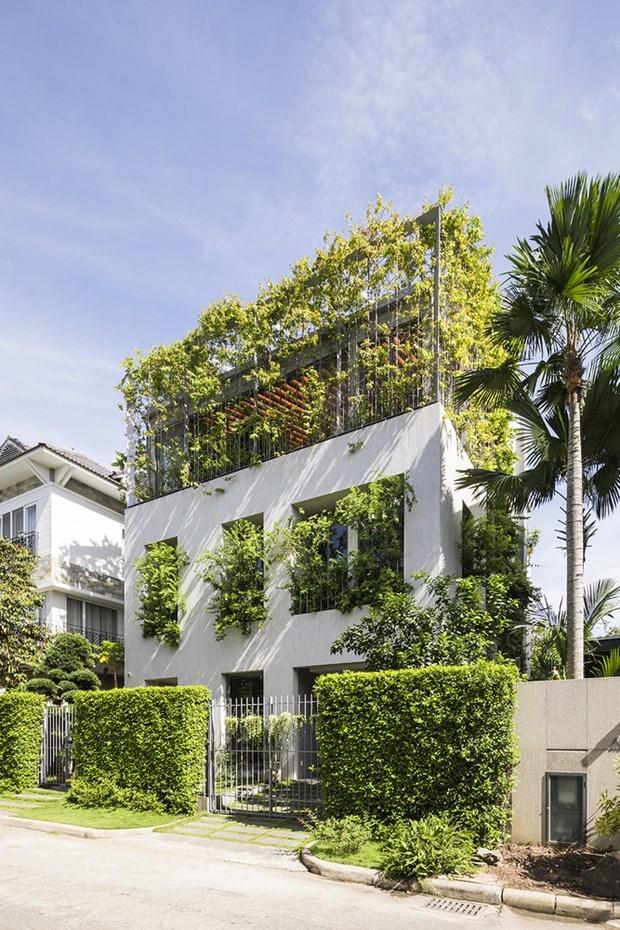 Arquitecto vietnamita gana premio regional de diseno hinh anh 1