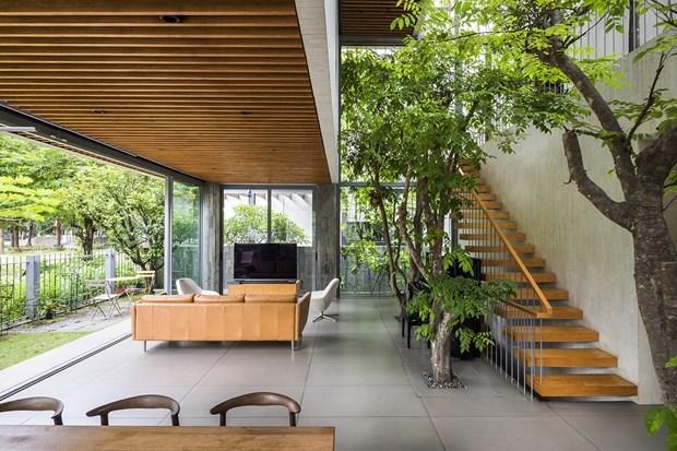 Arquitecto vietnamita gana premio regional de diseno hinh anh 2