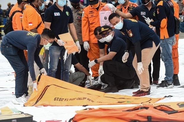 Identifican a 12 victimas del accidente aereo en Indonesia hinh anh 1