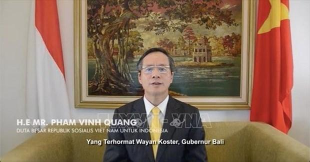 Promueven nexos de amistad entre Vietnam e Indonesia hinh anh 1