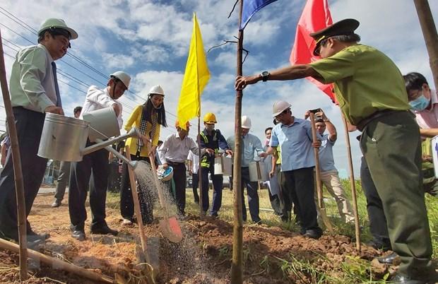 Lanzan campana de plantacion de arboles en provincia vietnamita de Ben Tre hinh anh 1