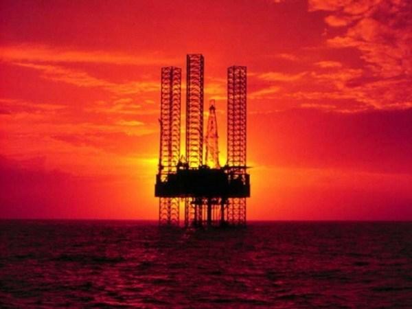Indonesia invertira fondo multimillonario en sector de petroleo y gas en 2021 hinh anh 1