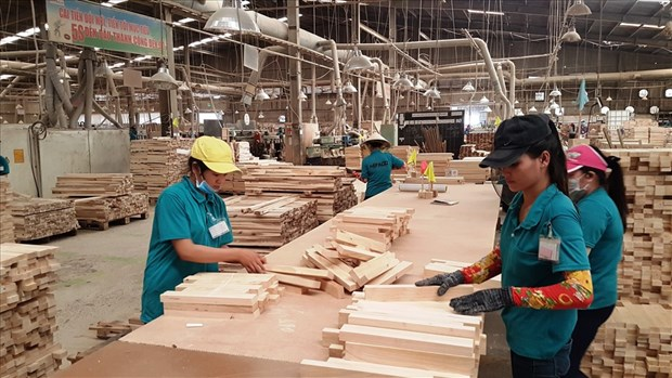 Vietnam, quinto exportador mundial de madera en 2020 hinh anh 1