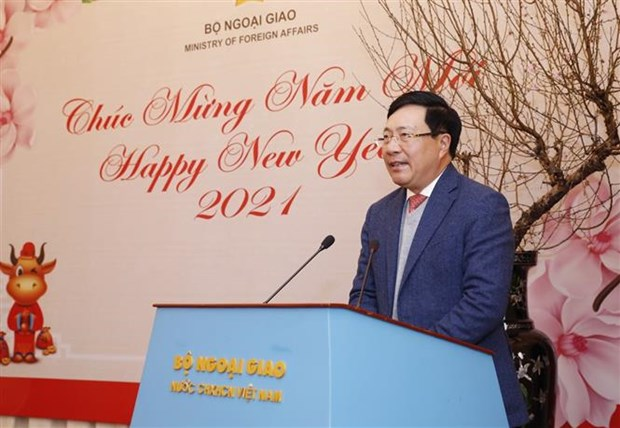 Ministerio vietnamita de Relaciones Exteriores logra resultado positivo pese a COVID-19 hinh anh 1