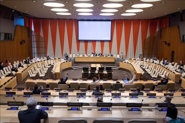 Vietnam apoya el proceso electoral democratico en Somalia hinh anh 1